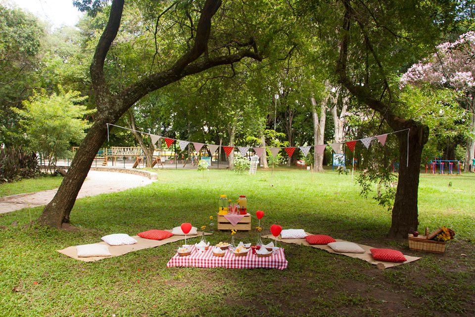 Decoração de festa aniversário ar livre